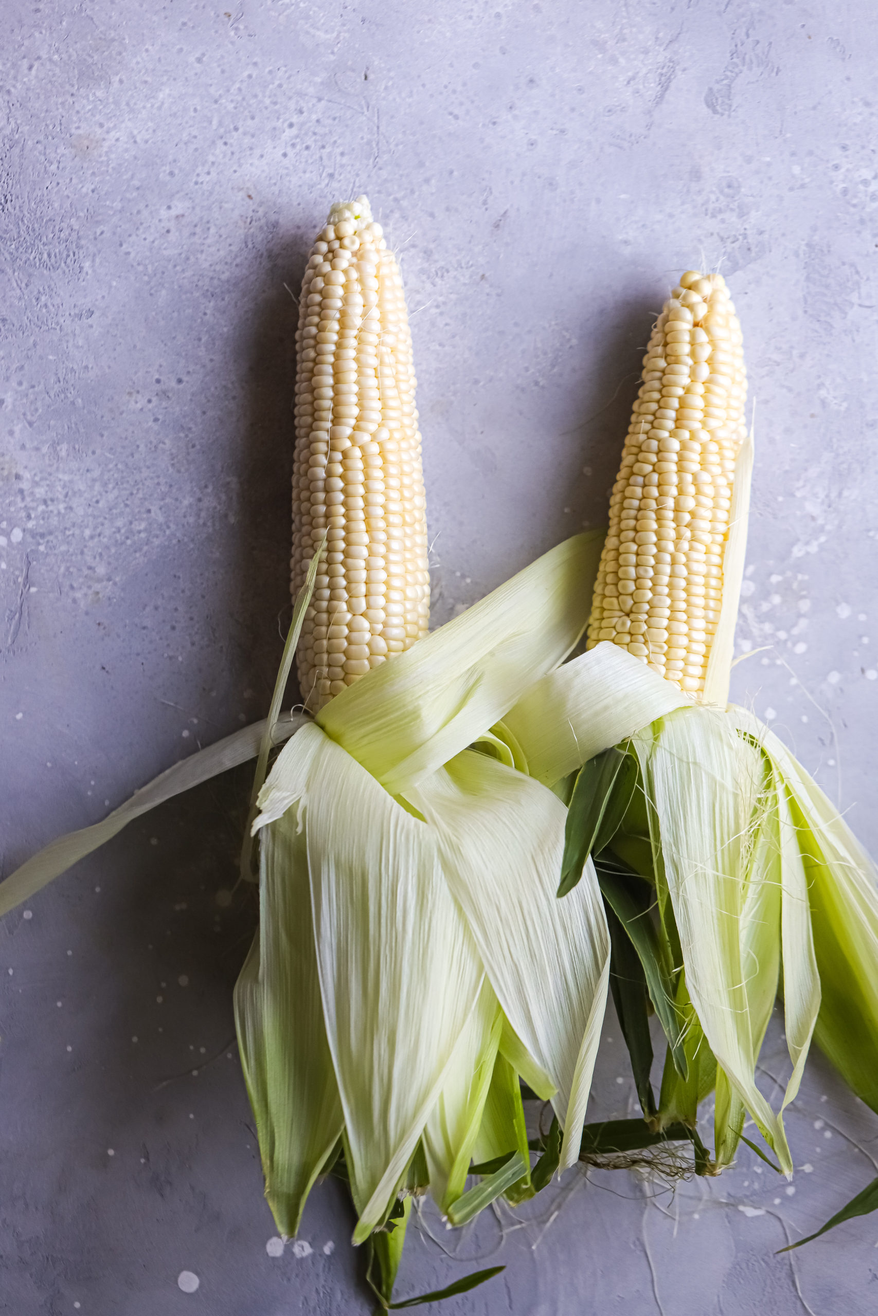 Sweet Corn scaled